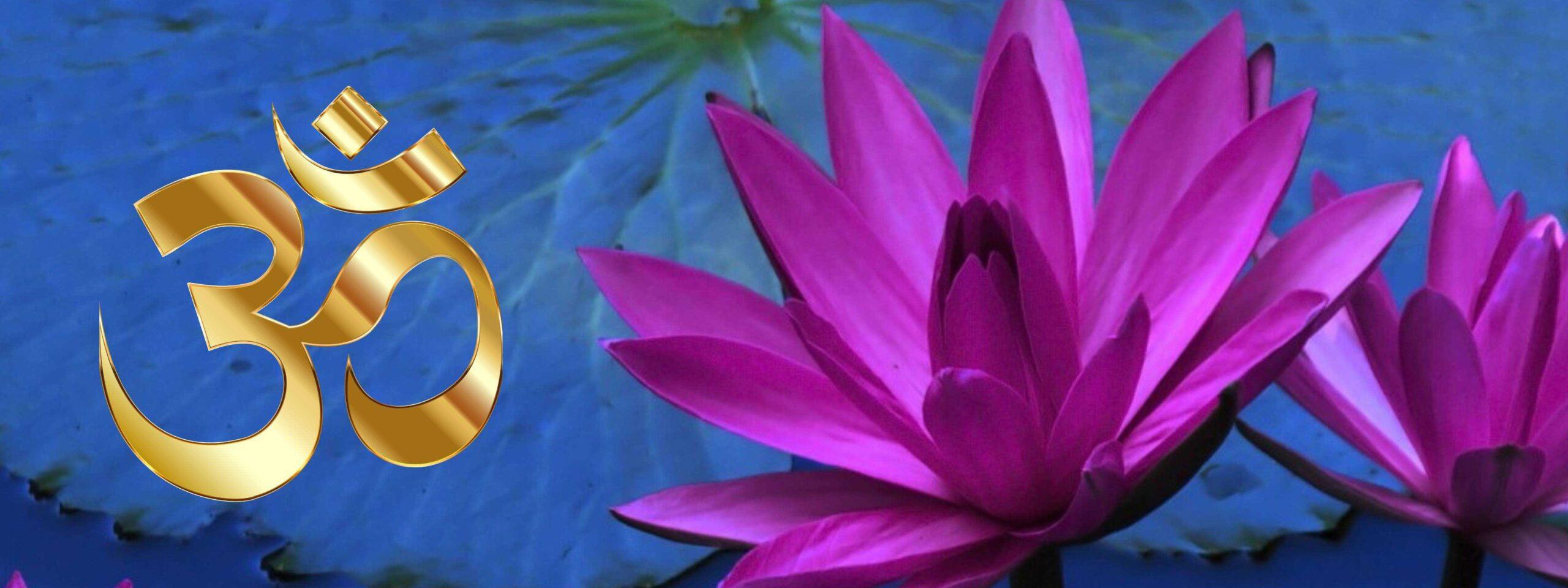 Lotusblume Violett mit goldenem OM